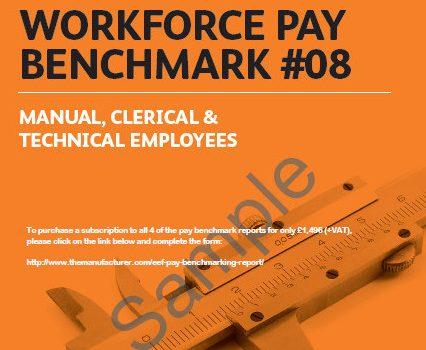 Workforce Pay Benchmarking TM Sample 2013