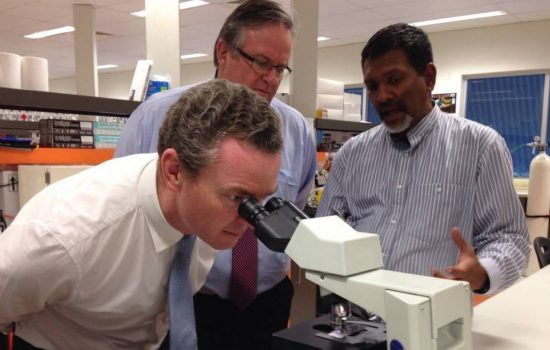 Minister for Education and Training, Christopher Pyne, said he cannot guarantee $150m in scientific research funding if the Government's higher education reforms are not passed - image courtesy of Christopher Pyne.