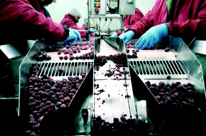 Manufacturing Production Line Stock Image