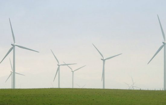 Wind turbines (image courtesy of Anita K Hart)