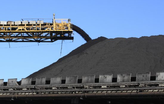 Adani has described the federal court ruling against the Carmichael coal mine was a 'technicality'.