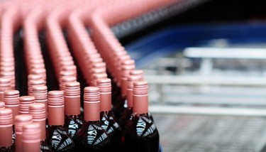 big data Accolade wines are continuously improving their operation resulting in a more efficient workforce.