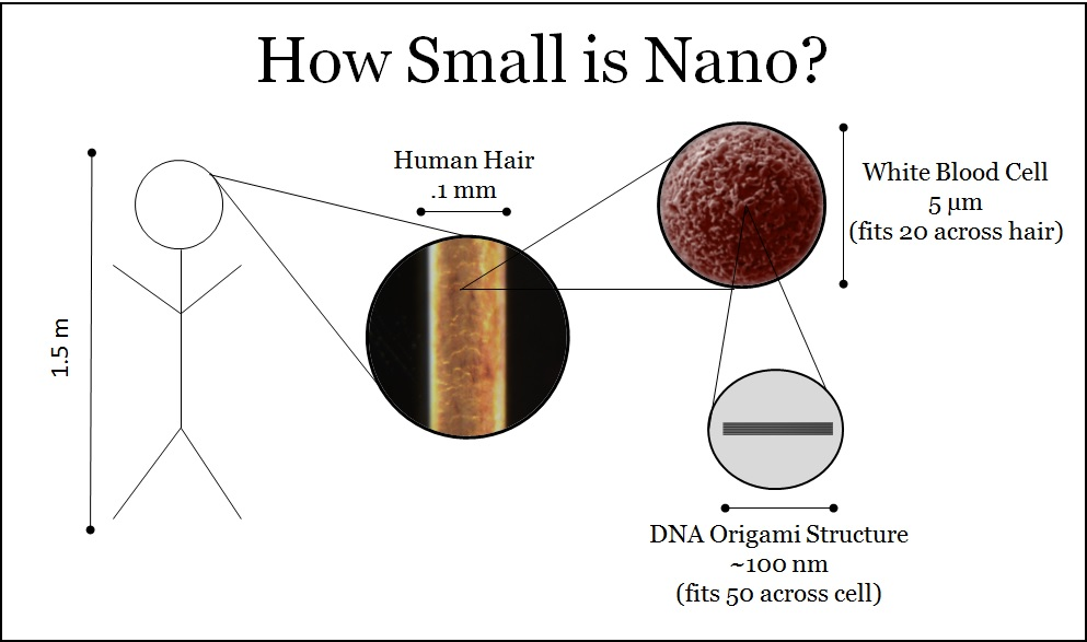How small is nano - image courtesy of Ohio State University