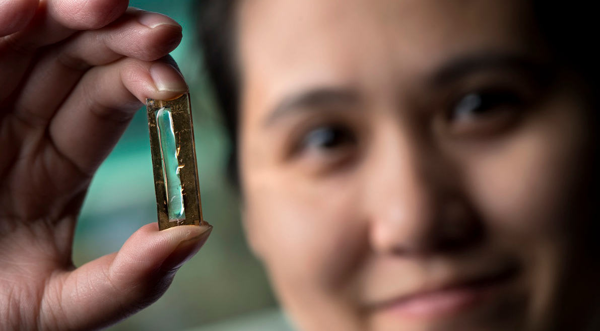 Researchers from the UCI have developed a nanowire based rechargeable battery that can last 400 times longer than normal batteries - image courtesy of Steve Zylius and UCI.