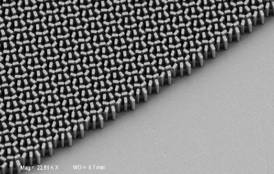 An electron microscope image of the surface of the metalens. Image courtesy of the Capasso Lab.