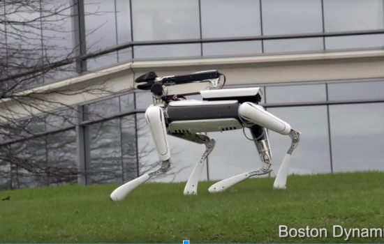 The new SpotMini, with a white external casing - image courtesy of Boston Dynamics.