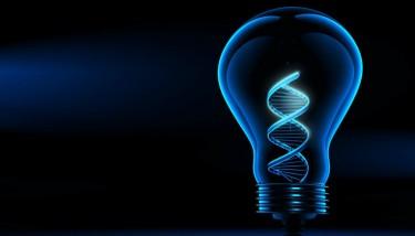 Lightbulb Innovation IP Intellectual Property - stock image