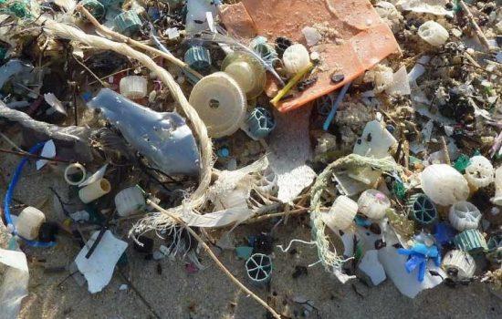 Marine Plastic Waste Beach Rubbish Sustainable stock - image courtesy of Pixabay.