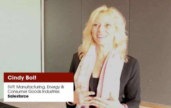 Cindy Bolt, SVP, Manufacturing, Energy & Consumer Goods Industries