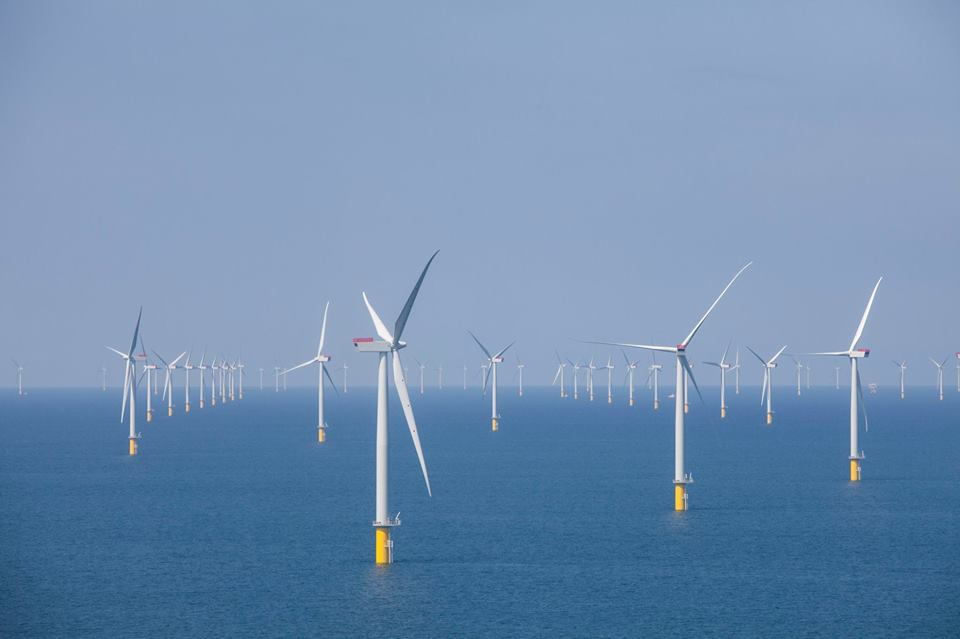 The capacity of offshore wind farms nearly doubled over 2018. One new wind farm, the Walney Extension, is the largest offshore wind farm in the world.
