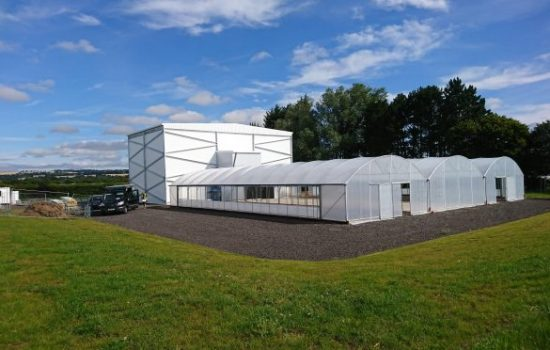 Food will be grown in a stacking system in a new building at Invergowrie - image courtesy of JHI