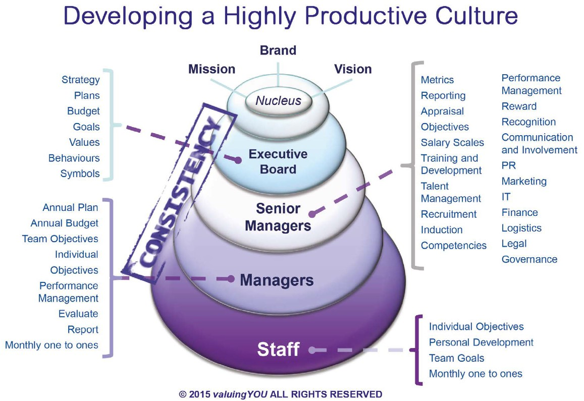 The valuingYOU Highly Productive Culture Model