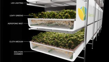 AeroFarms grows produce without sun or soil in a fully-controlled indoor environment - image courtesy of AeroFarms.