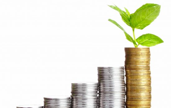 Coins Money Finance Investing for Growth Investment - image courtesy of Depositphotos.