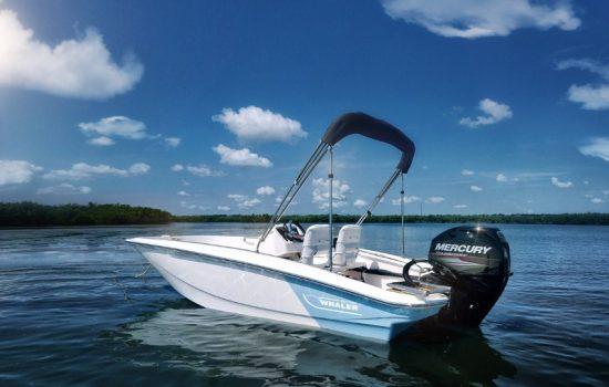 The Brunswick Boston Whaler - image courtesy of Brunswick